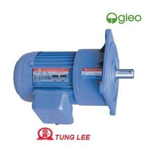 Động cơ giảm tốc Đài Loan Tunglee 0.1kw